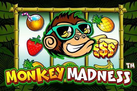 Monkey Madness Slot Game Free Play at Casino Ireland