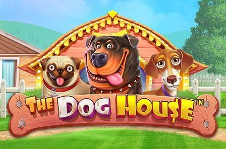 The Dog House Slot Game Free Play at Casino Ireland
