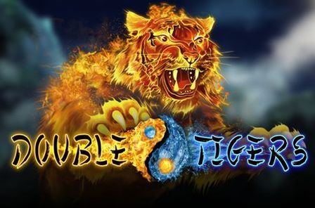 Double Tigers Slot Game Free Play at Casino Ireland