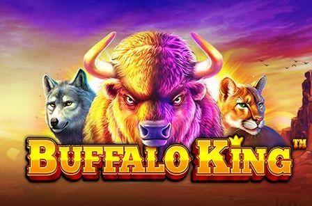 Buffalo King Slot Game Free Play at Casino Ireland